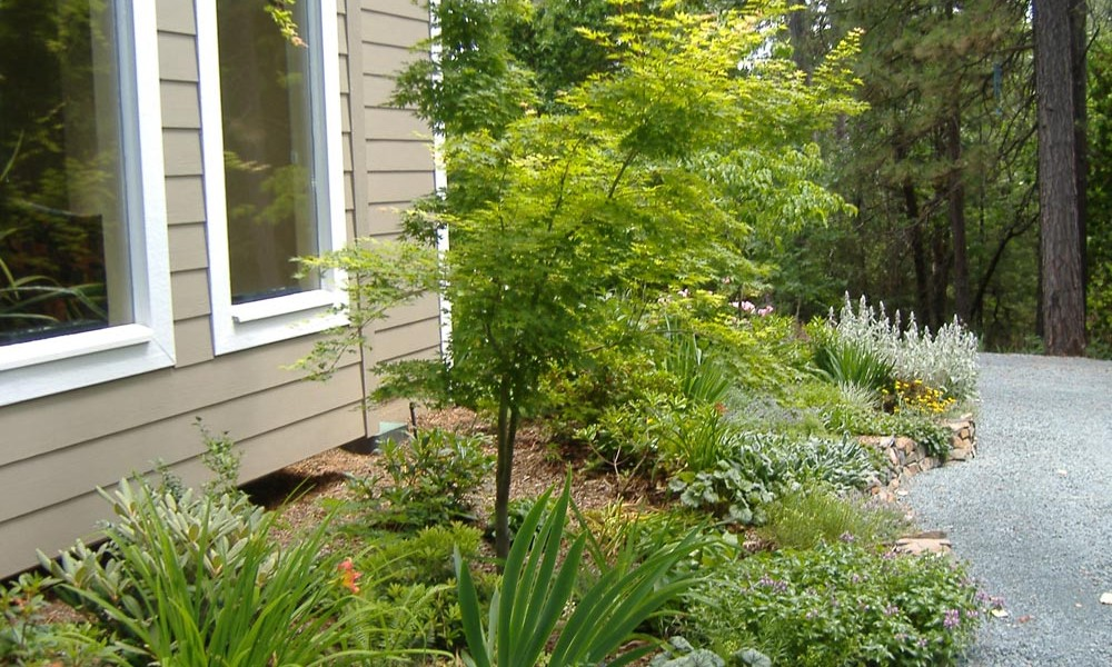photo of landscaped yard by leaf it to me in nevada county